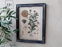 """Vintage Fekete """"Forêt de Soignes"""" Fali Kép - 43 cm."""