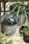 """Antik Cink """"Urban Garden"""" 3 Darabos Kaspó Szett - 29 cm-től"""