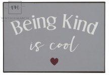"Vintage ""Being kind is cool"" Fém Tábla - 20 cm."